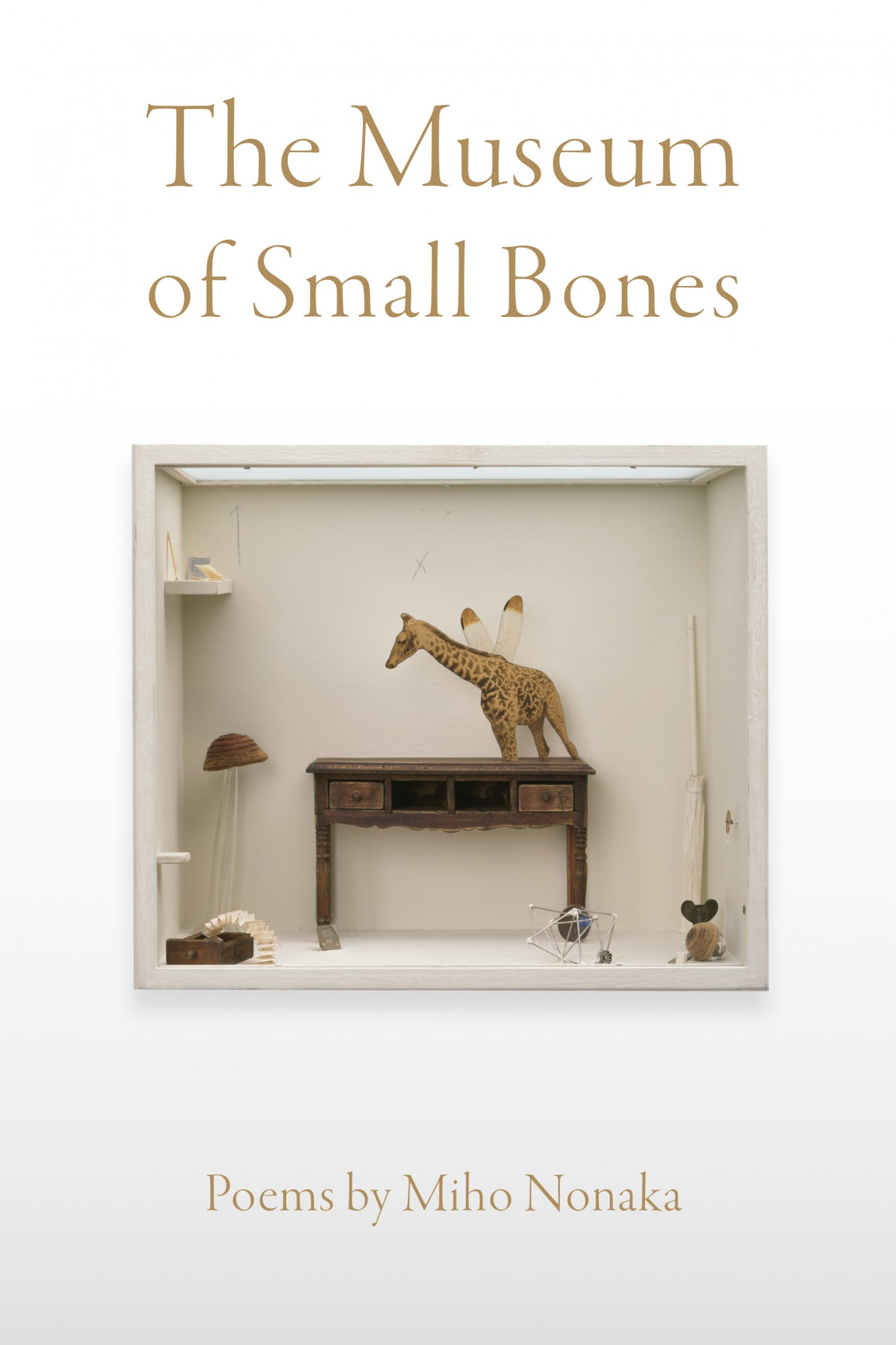The Museum of Small Bones
